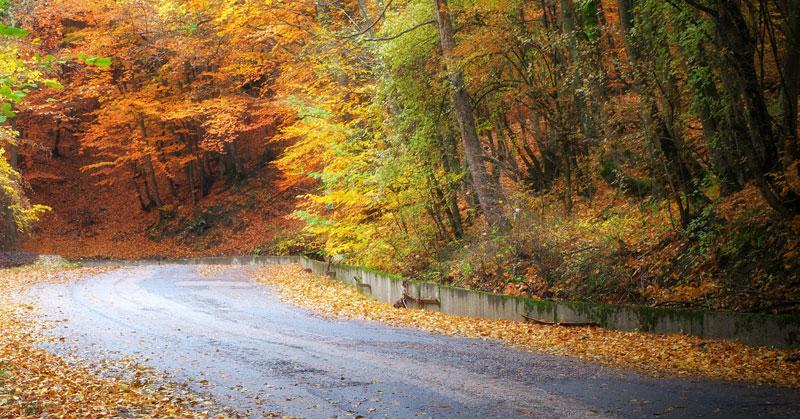 Getting Your Asphalt Ready for Autumn